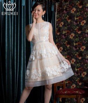 画像1: 【ERUKEI Settan】フラワーレース・ノースリーブ・Aライン・ミニドレス・ワンピース